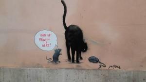 mysz nie mysz